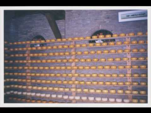 PICTURES OF AMSTERDAM/ HOLLAND  1996 TO  1998 MY FAVOURITE COUNTRY