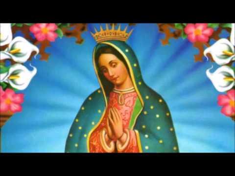 CANTOS GUADALUPANOS Y MARIANOS | Vers. Andina - Acústico | 12 DE DICIEMBRE | Divina Misericordia TV