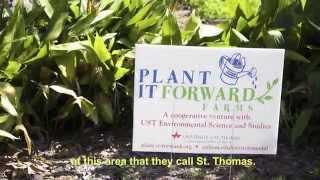 Plant It Forward   Video2