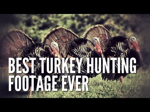 Best Turkey Hunting Footage Ever.