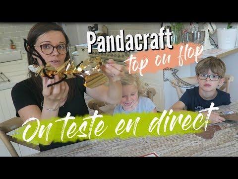 ❥ PANDACRAFT TOP OU FLOP AVIS DES ENFANTS [TEST] !!! ♥