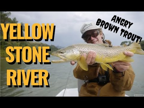 Floating the Yellowstone: Dry Flies & Streamers