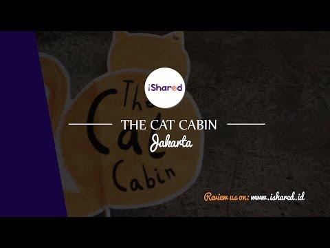 iShared.id - The Cat Cabin Jakarta