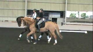 Topline Training  - DaLana and Felix Pas de duex like