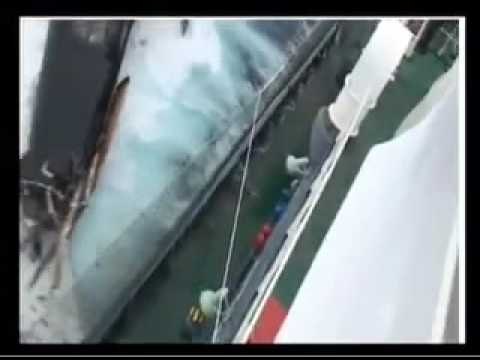 Sea Shepherd s Ady Gil attacked by Japanese Whaling Vessel