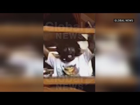 New video emerges of Trudeau in blackface
