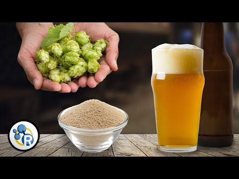 Amazing Craft Beer Chemistry That You Won't Be Taught At School