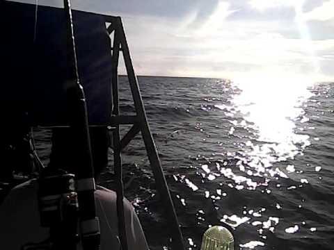 ตกปลาเกาะรอก...กระบี่