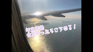 もう半年も前の動画でごめんなさい   潮田ひかると年末年始旅行…台北は...