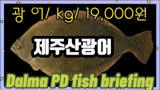노량진수산시장/스페셜/광어/kg/19,000원/먹방까지…