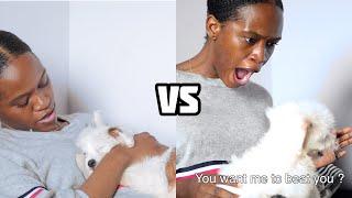 Download Maraji Comedy - 🐶NORMAL DOG OWNERS VS AFRICAN DOG OWNERS (Maraji's World)
