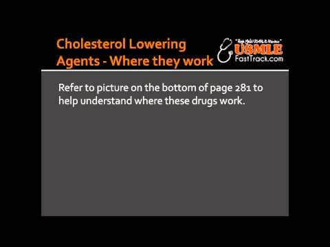 Cholesterol Lowering Agents - Where they work