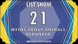 Dogs Don't See in Black and White and Other Animal Myths, Debunked | Mental Floss List Show | 528