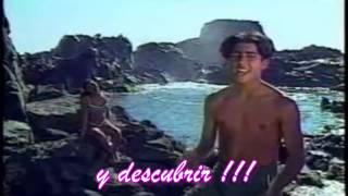 Rosa en la playa - Salserin