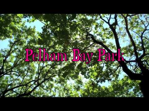 Pelham Bay Park & Environs