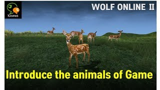 Introduce the animals in the game - Wolf Online 2