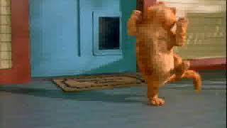 Cat and dog dancing for Tamil song|Baby's Choice
