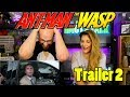 Ant-Man & The Wasp Trailer 2 Reaction - Where Are Ant-Man & The Wasp.. mp3