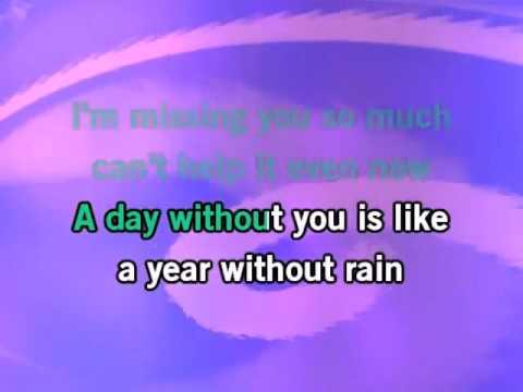 Selena Gomez  The Scene   A Year Without Rain KaraokeInstrumental with lyrics on screen