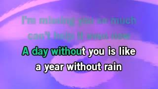 Selena Gomez  The Scene   A Year Without Rain KaraokeInstrumental with lyrics on screen