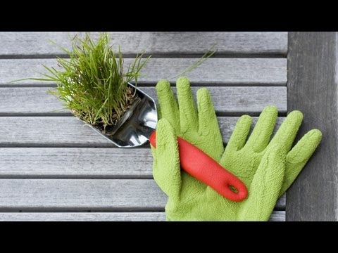 How to Maintain Your Garden Tools | At Home With P. Allen Smith