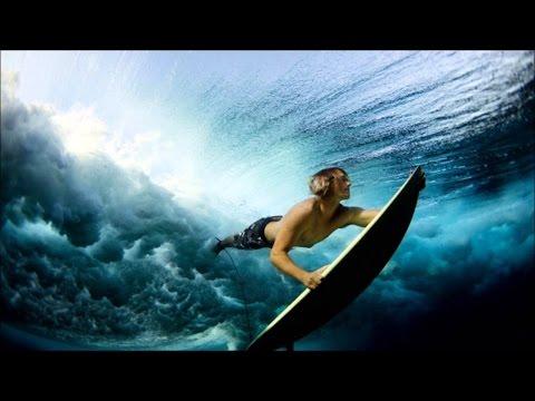 Top 10 Best Underwater Photographers in the World