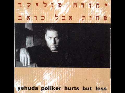 יהודה פוליקר - דברים שרציתי לומר