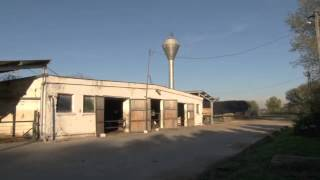 Agri Properties - FarmVideo dairy farm in Hungary for sale