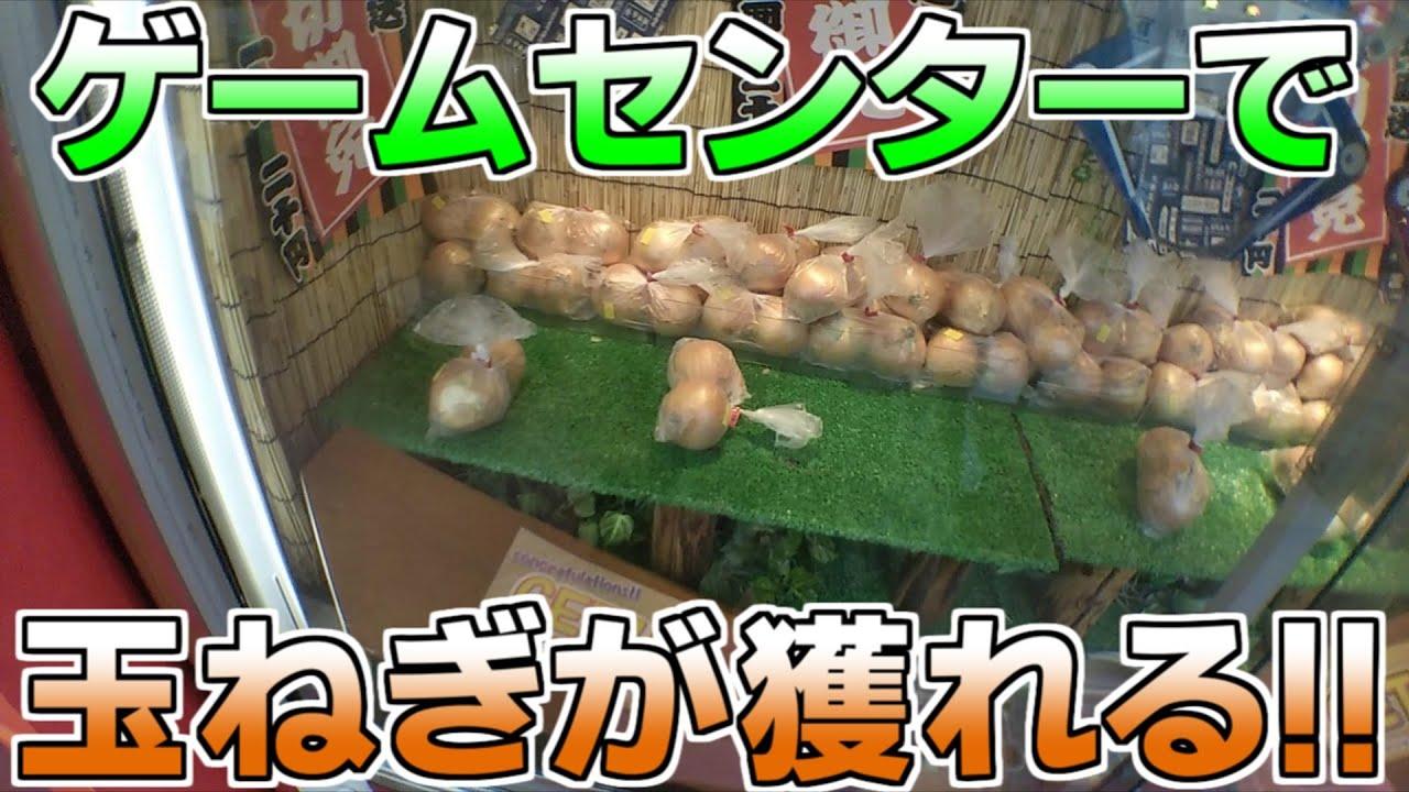 「UFOキャッチャー」ゲームセンターで地域直送の玉ねぎが獲れる、しかも20円1回で安い!!