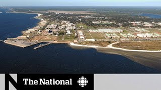 Deadly attack at Florida navy base