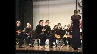 Carl Stamitz - Orchesterquartett F-Dur - 1. Allegro assai - Mandolinata Mannheim 2010