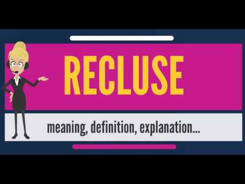 The definition of recluse