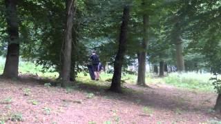Seberevolta Liberec-Úklid lesoparku