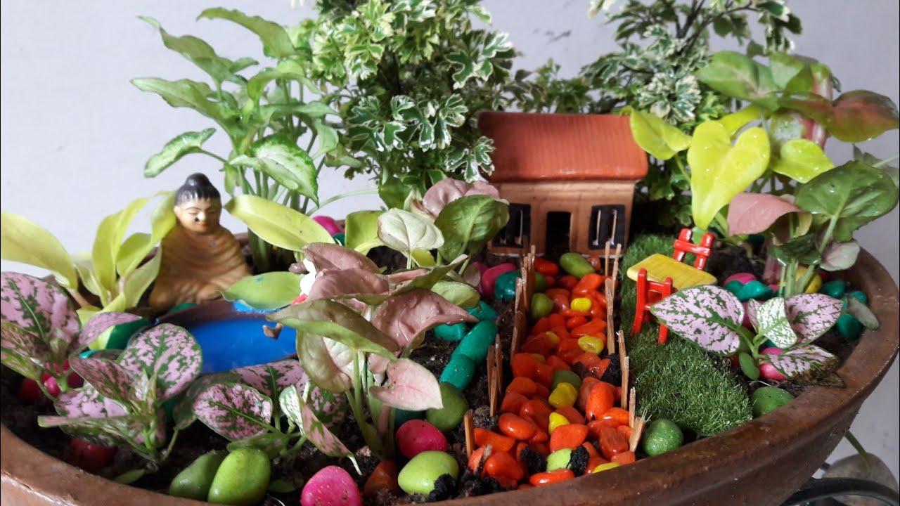 My Tray Garden   How To Make Tray Garden || Tray Garden Tutorial For  Beginners