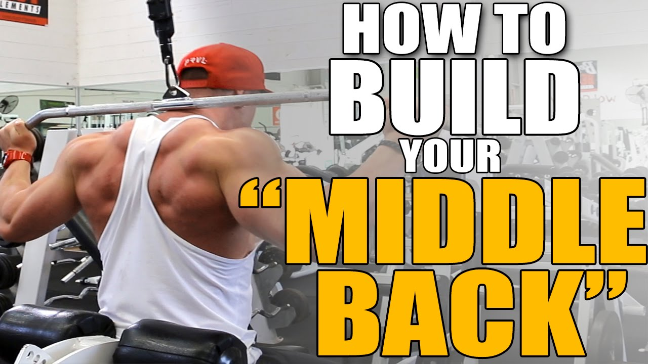 HOW TO BUILD YOUR MIDDLE BACK! - YouTube