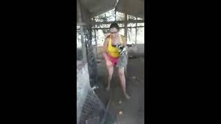 Rose pegando galinha