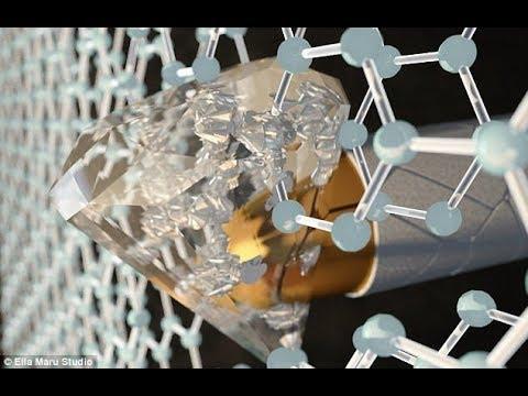 "Daily Rabbit Hole #62 | Andrew McCabe ""retiring"" | Glowing plants from MIT | Leonardo Da Vinci"