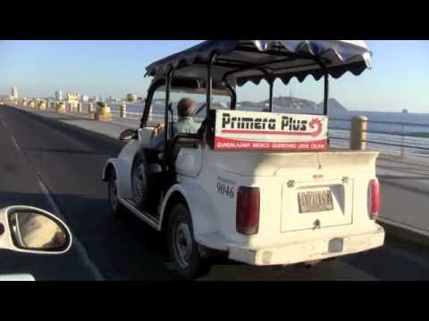 Pulmonia Car For Sale