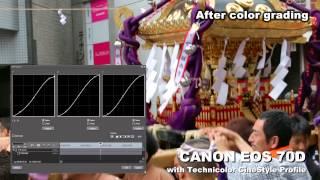 canon eos 70d with technicolor cinestyle profile