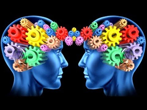 Male and Female Brains Wired Differently, Study Reveals