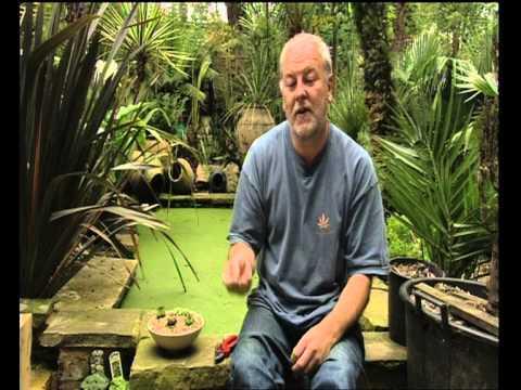 Real Gardens clip - Ann-Marie Powell meets Pat the...