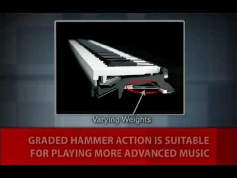 Mastery of Feel - Graded Hammer Action