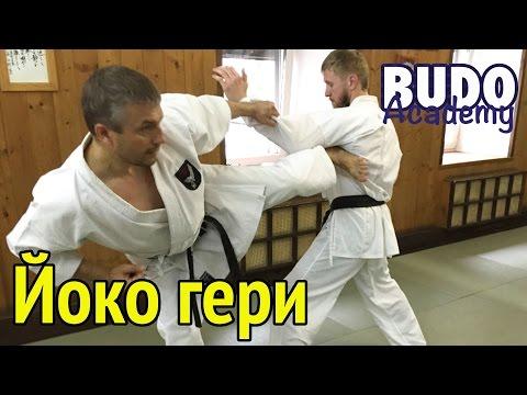 Йоко гери. Евгений