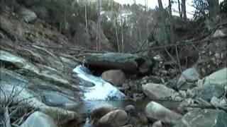 Frye Canyon Trail