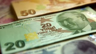 Turkish Central Bank Shareholders Are Furious Over $140 Payout