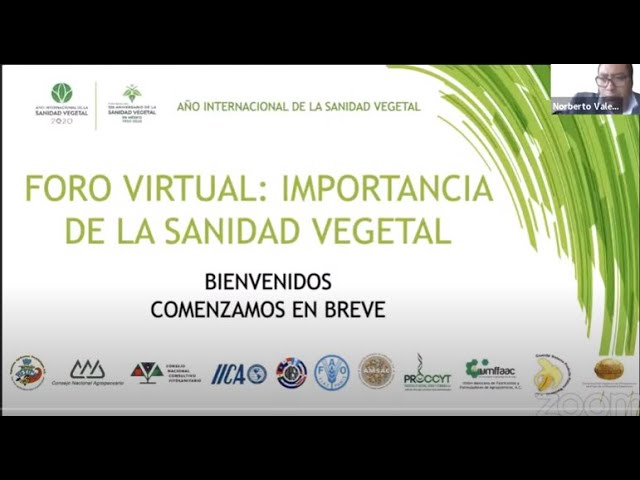 FORO VIRTUAL / IMPORTANCIA DE LA SANIDAD VEGETAL