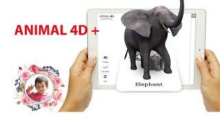 Card Animal 4D - Khám phá thế giới động vật  - Gấu chuối TV