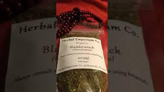 Bladderwrack seaweed