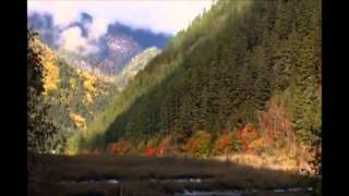 Chant Of Souls Phil Thornton Tibetan Meditation