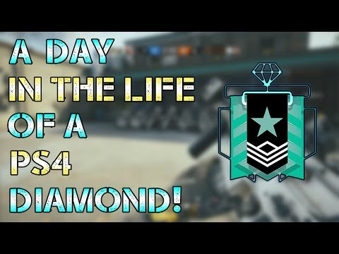 A Day in the Life of a PS4 Diamond
